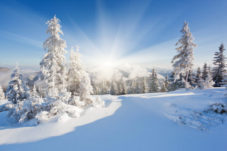 Winterlandschaft © Creative Travel Projects - shutterstock.de