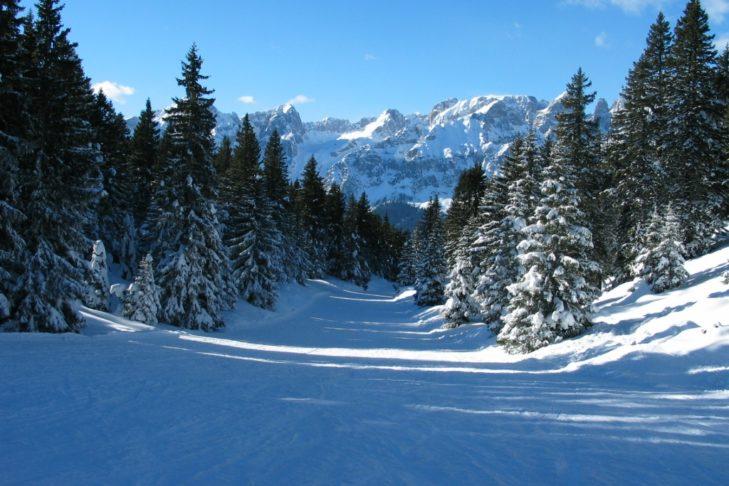 Im unteren Bereich führen die Pisten durch malerische Waldschneisen.