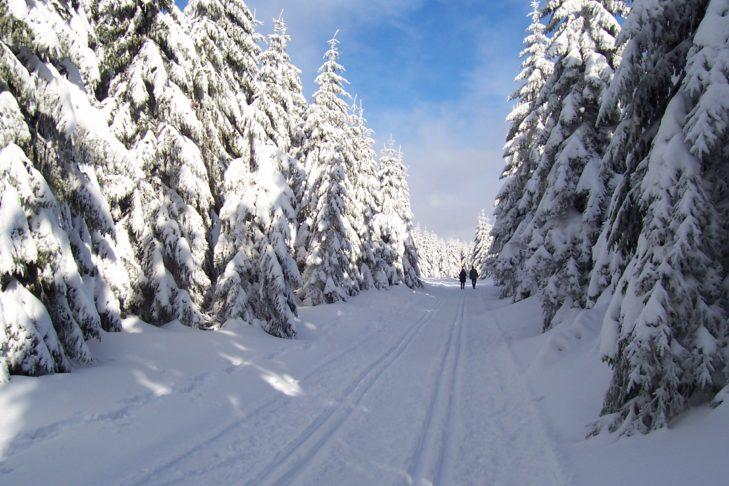 Langlaufen, Wandern, Skifahren - in Oberhof und Suhl ist all das bestens möglich.