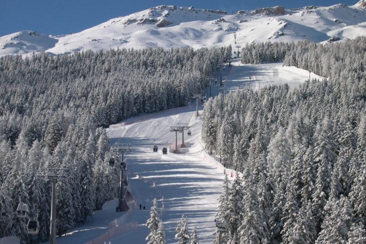 Romantische Waldabfahrt im Skigebiet Skigebiet Santa Caterina Valfurva.
