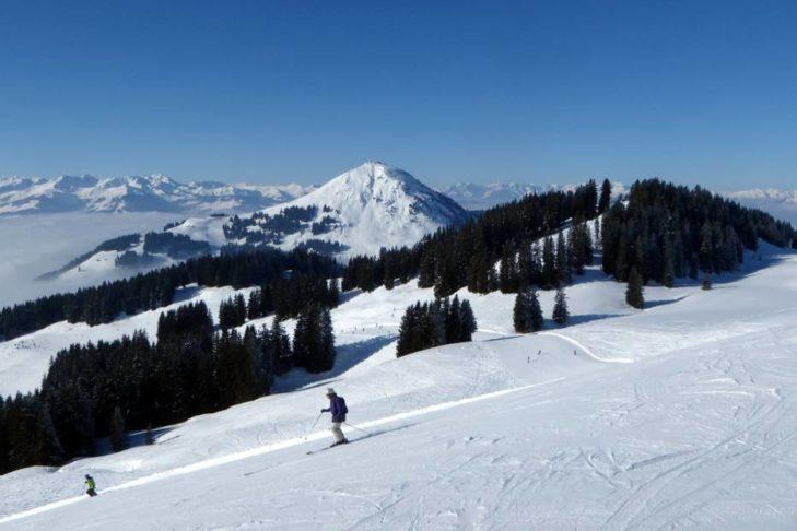 Der Wald macht die SkiWelt Wilder Kaiser-Brixental zum besonderen Naturerlebnis.