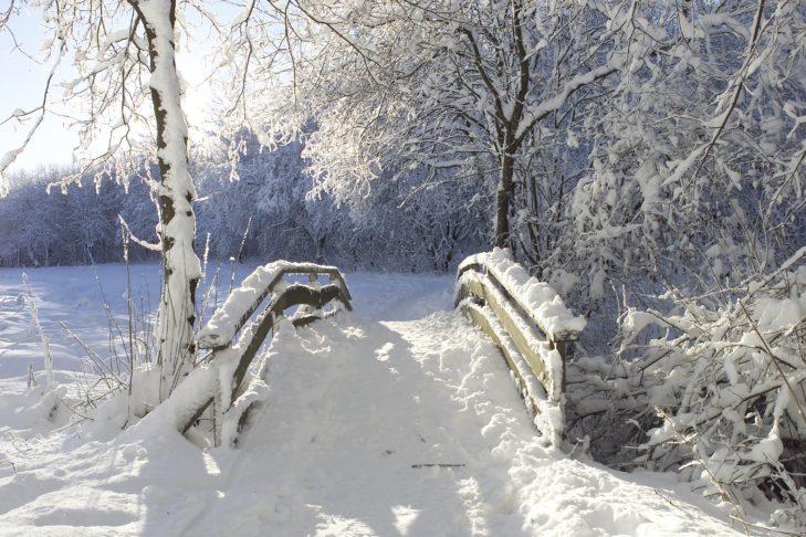Winterberg: Verschneite Winterlandschaft im Sauerland.