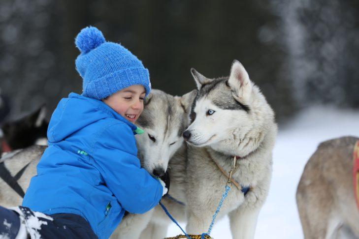 Hundeschlittenfahrten sind für Kinder ein Erlebnis.