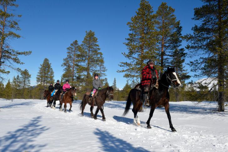 Winter-Ausritt zu Pferde durch die verschneite Region um Idre. Foto: Nisse Schmidt