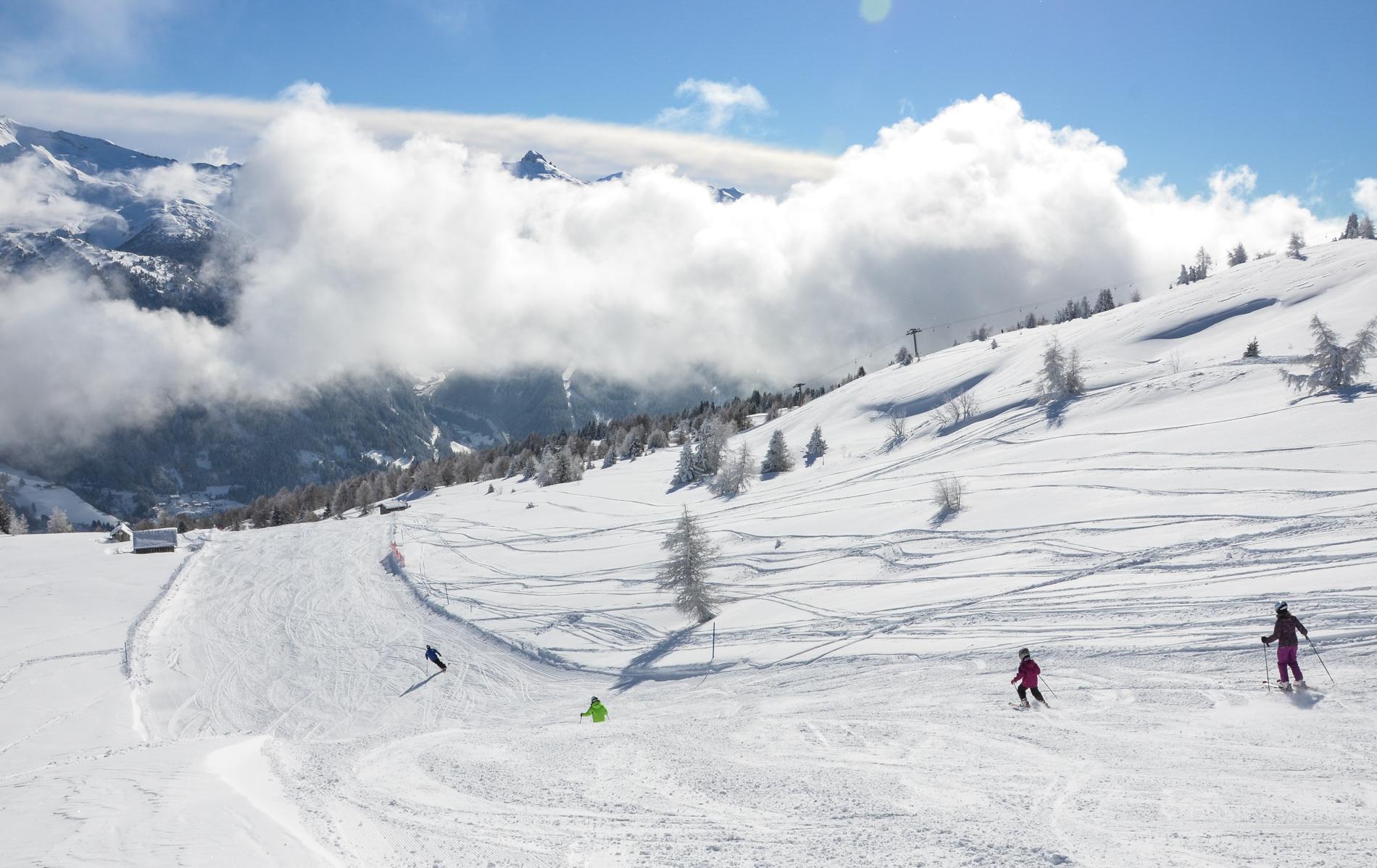 steinach ski