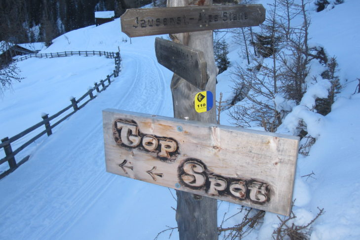 Fußweg mit Wegweiser auf der Alpe Stalle.