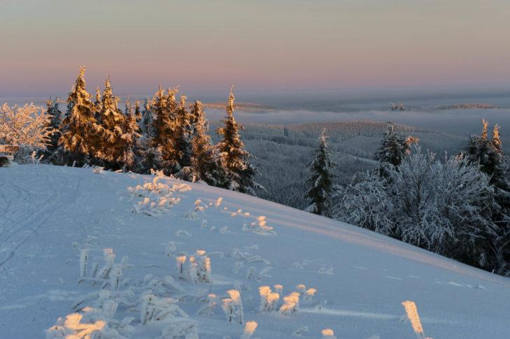 Winteridylle im Thüringer Wald.