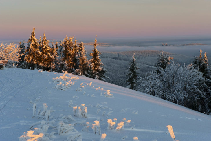 Reizvolle Landschaft im Thüringer Wald.