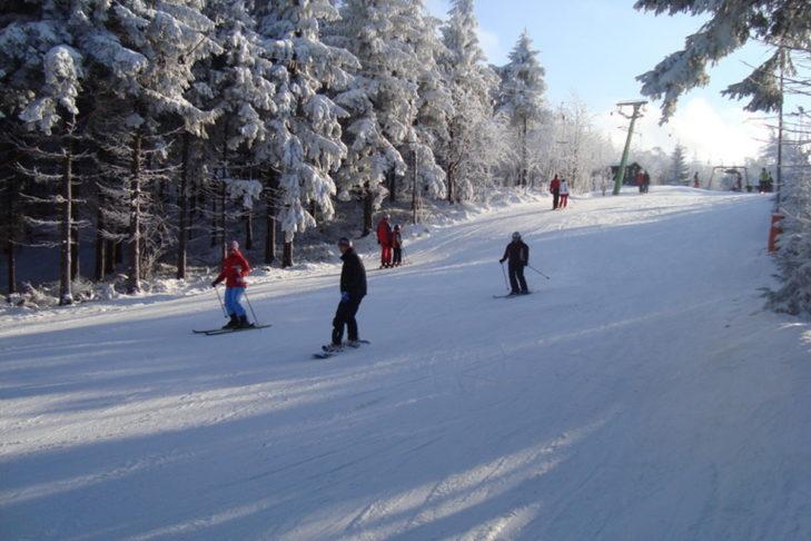 Skigebiet Altenberg: Romantische Waldabfahrt.