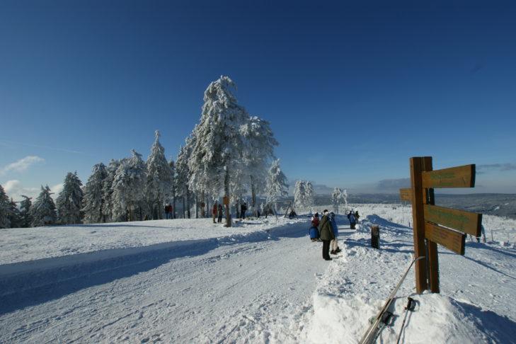 Skigebiet Braunlage-Wurmberg: Zahlreiche gewalzte Wanderwege führen durch den Harz.