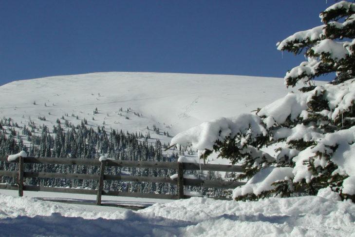 Verschneite Landschaft am Salzstiegl bei Hirschegg.