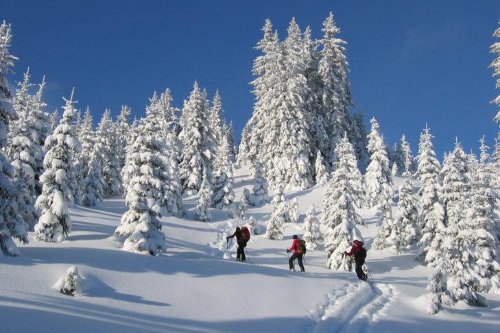Schneeschuh- und Skitouren sind in den Eisenerzer Alpen ein Traum.