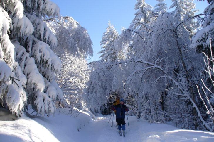 Langlauf durch die tief verschneiten Wälder rund um Rumburg.