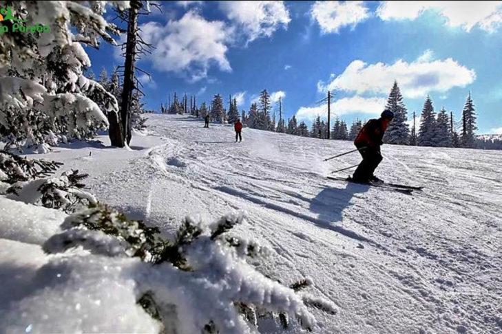 Von Bäumen gesäumte Piste im Skigebiet Schreiberhau.