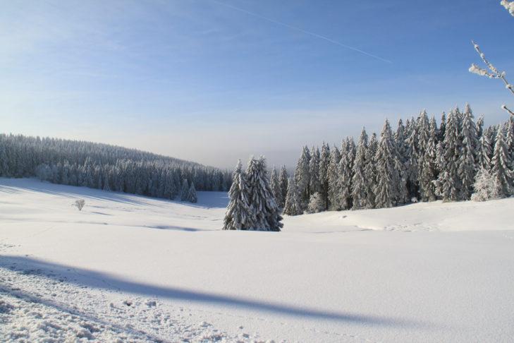 Winterliche Landschaft rund um Goslar.