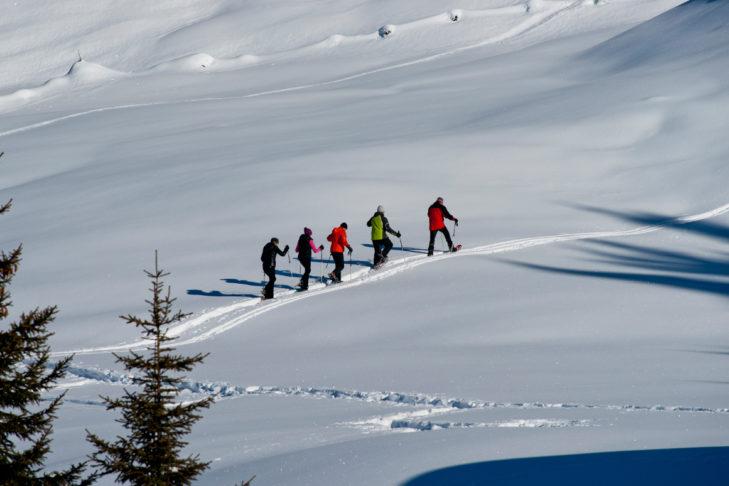 Schneeschuhwanderer rund um Kappl.