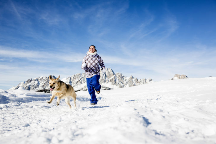 Skiurlaub mit Hund? Auf jeden Fall!