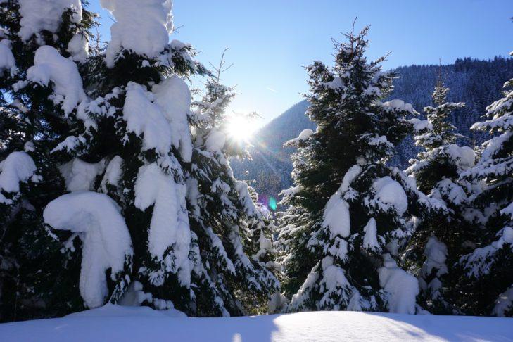 Traumhafte Schneelandschaften rund um die Trattenbachalm